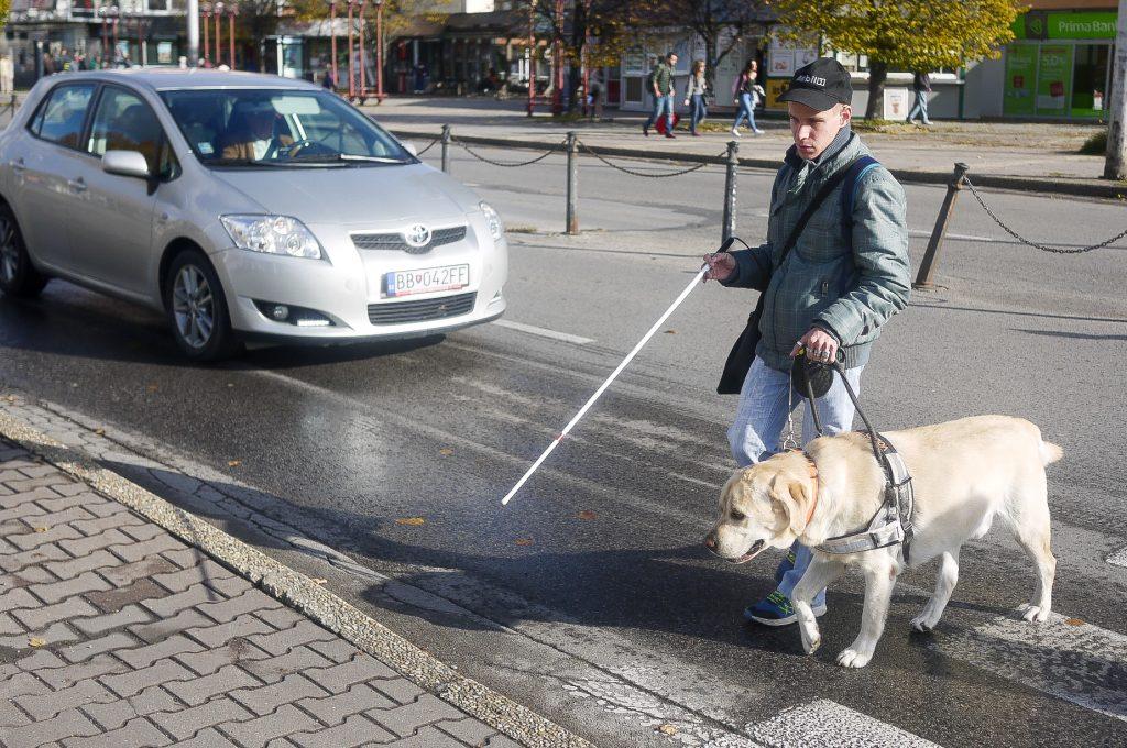 Nevidiaci prechádza cez priechod s bielou palicou a vodiacim psom.
